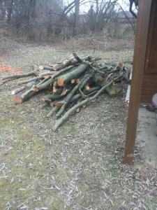 Viel Holz vor der Hütte!